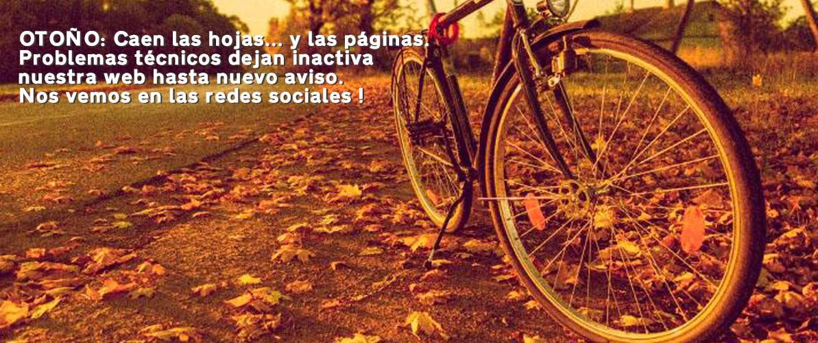 Los Martinez Banco de bicis Alquiler y venta de bicicletas especiales para ocasiones especiales
