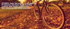 Backgrund image Los Martinez Banco de bicis Alquiler y venta de bicicletas especiales para ocasiones especiales
