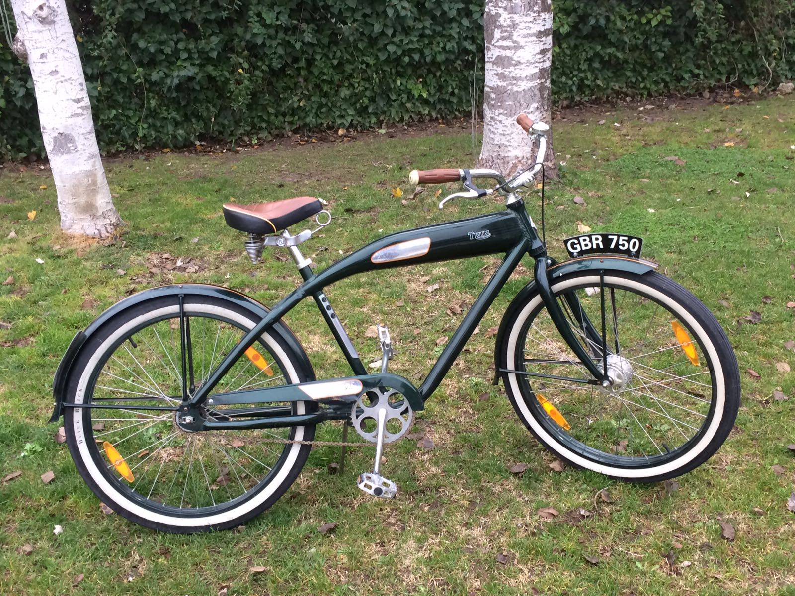 Los Martínez Banco de bicis Alquiler bicicletas Cruiser Felt Twin