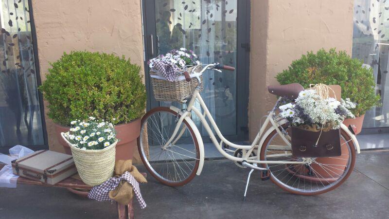 capri_barcelona_lLos Martínez Banco de bicis Alquiler bicicletas Capri Berlin Barcelona